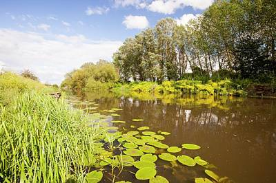 The River Avon At Pershore Print by Ashley Cooper