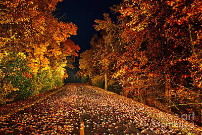 The Road Less Traveled - Blue Ridge Parkway I Print by Dan Carmichael