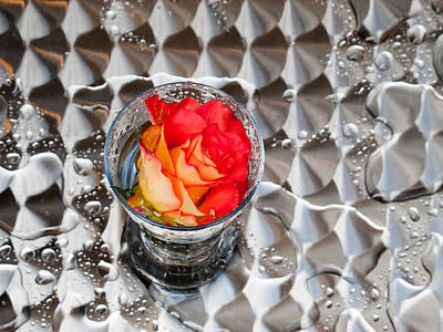 Glass Photograph - The Rose In The Rain by Hakon Soreide