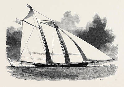 The Schooner Yacht  America Print by English School