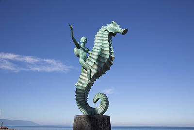 Caballero Photograph - The Seahorse by Douglas Peebles