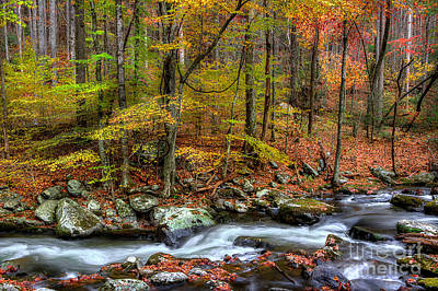 Fall Scenes Photograph - The Season Flows Along by Michael Eingle