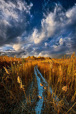 Bluesky Photograph - The Secret Path by Phil Koch