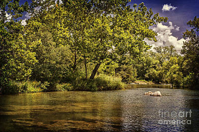 The Shores Of Blue River Print by Tamyra Ayles
