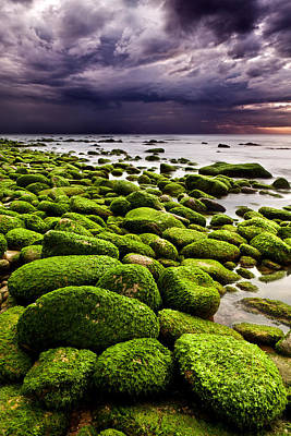 The Silence After The Storm Print by Jorge Maia