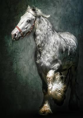 The Silver Gypsy Print by Brian Tarr