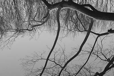 Monochrome Photograph - The Sky Is Falling by Luke Moore
