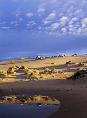 Oregon Dunes National Recreation Area Photograph - The Sky Is Reflected In An Ephemeral by Robert L. Potts
