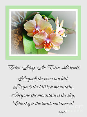 Orchids Mixed Media - The Sky Is The Limit V 4 by Andee Design