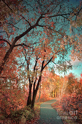 Fading Dream Photograph - The Slow Fade Of Autumn by Tara Turner