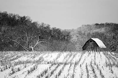 The Snowy Aftermath In Black And White Print by Todd Klassy