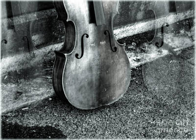 Cello Photograph - The Sound Of Abandonment  by Steven  Digman