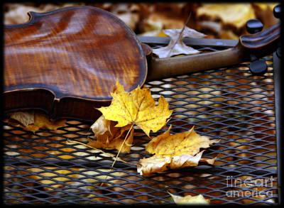 Autumn Photograph - The Sound Of November  by Steven  Digman