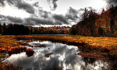 The South End Of Cary Lake Print by David Patterson