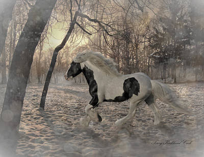 Gypsy Digital Art - The Sparkling Wood by Terry Kirkland Cook