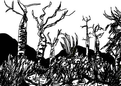 Desert Drawing - The Spiny Forest by Paul Sutcliffe