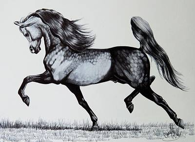 The Spirited Arabian Horse Print by Cheryl Poland
