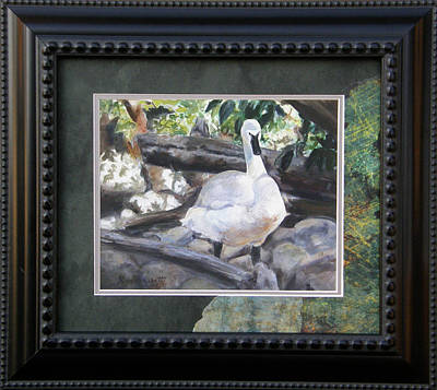 Water Painting - The Swan Framed by Lori Brackett