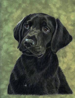 Black Labrador Drawing - The Thinker by Debbie Stonebraker