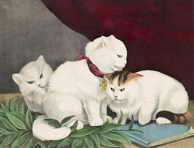 Cats Drawing - The Three White Kittens Circa 1856 by Aged Pixel