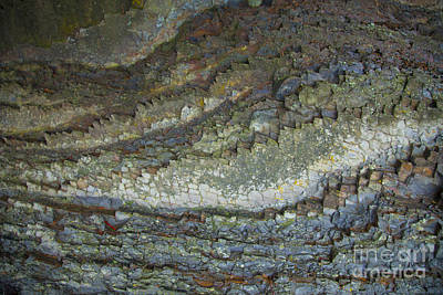 The Toothed Rock Original by Graham Foulkes