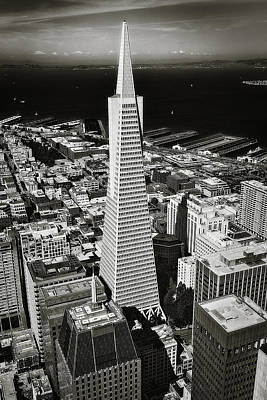 Downtown Area Photograph - The Transamerica Pyramid by Erik Brede