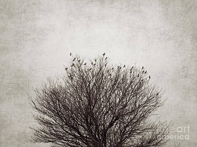 Sparrow Digital Art - The Tree by Diana Kraleva
