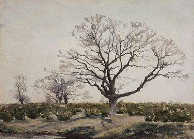 Landscapes Drawing - The Tree  by Henri Duhem