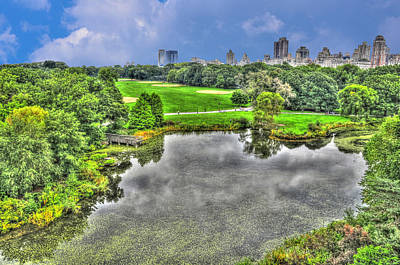 Central Park Photograph - The Turtle Pond At Central Park by Randy Aveille