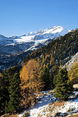 The Upper Valley Martelltal In Fall Print by Martin Zwick