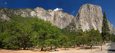 Yosemite Photograph - The Valley Floor by Charles Kozierok