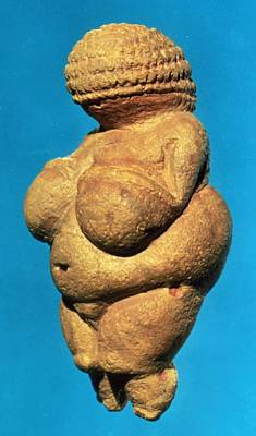 The Venus Of Willendorf, Side View Of Female Figurine, Gravettian Culture, Upper Palaeolithic Print by .