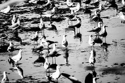 Photograph - The Walk. by Kornrawiee Miu Miu