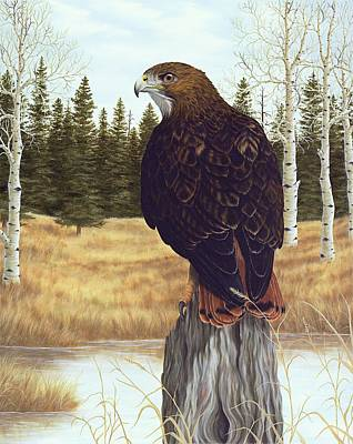Hawk Painting - The Watchful Eye by Rick Bainbridge
