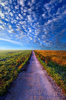 The Way Is Clear Print by Phil Koch