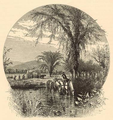 The White Mountains From The Conway Meadows 1872 Engraving Print by Antique Engravings