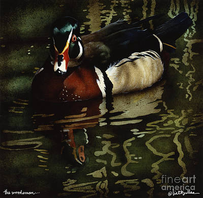 Wood Duck Painting - The Woodsman... by Will Bullas
