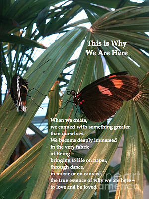 This Is Why We Are Here Print by Cristina Norcross