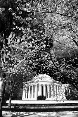Thomas Jefferson Memorial Print by Mitch Cat