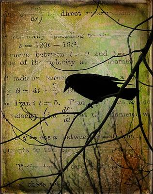 Thoughts Of Crow Print by Gothicolors Donna Snyder
