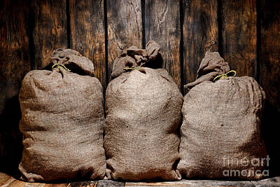 Three Bags In A Warehouse Print by Olivier Le Queinec