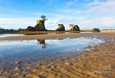 Three Brothers Rock Formation Near The Oregon Coast Print by Jamie Pham