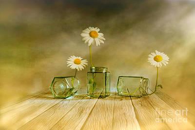 Traditional Digital Art - Three Daisies by Veikko Suikkanen