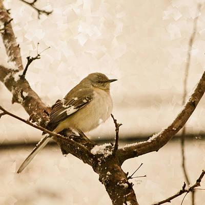 Mockingbird Mixed Media - Three Days Before Spring  by Trish Tritz