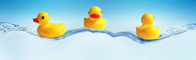 Rubber Duck Photograph - Three Ducks On Water by Panoramic Images
