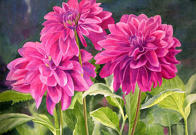 Three Magenta Dahlias Print by Sharon Freeman