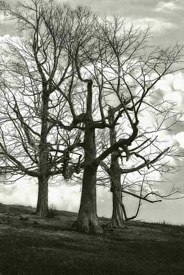 Three On A Hill Print by Jack Zulli