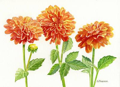 Three Orange Dahlias Original by Sharon Freeman