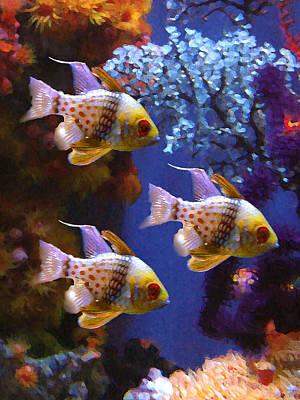 Colorful Tropical Fish Digital Art - Three Pajama Cardinal Fish by Amy Vangsgard