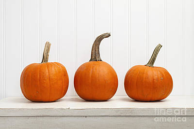 Shelf Photograph - Three Pumpkins by Elena Elisseeva